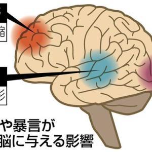 子どもの脳を傷つけ心を壊す「マルトリートメント」とは?