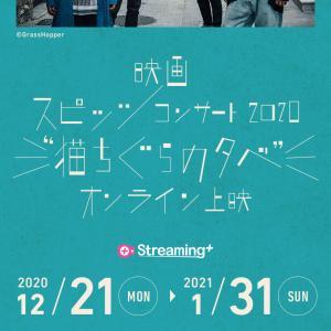 """「スピッツ コンサート 2020 """"猫ちぐらの夕べ""""」オンライン上映を見ました。"""