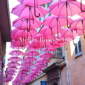 南仏のグラースで見た素敵な傘のディスプレイ♪&