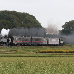 重連の日の朝 - 2019年秋・真岡鉄道 -