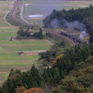 秋の山に向かって築堤を走る汽車 - 2019年晩秋・羽越本線 -