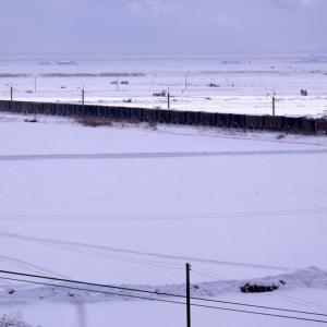 雪原を走る貨物列車 - 1984年・奥羽本線 -