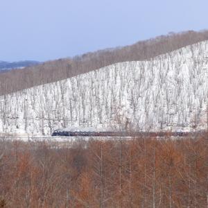冬の陽射し - 2020年・釧網線 -
