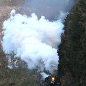 煙高らかに分水嶺を登る汽車 - 2020年・真岡鉄道 -