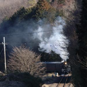 光と陰 - 2020年・真岡鉄道 -