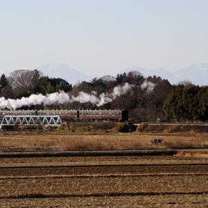 男体山をバックに機関車が光る - 2020年・真岡鉄道 -