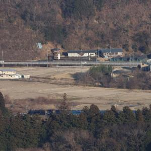 木々の隙間から見えた汽車 - 2020年・東武鬼怒川線 -