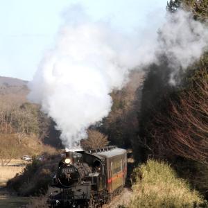 白煙の機関車と赤い帯の客車 - 2020年冬・真岡鉄道 -