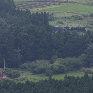 緑の茂る季節 - 2020年梅雨・東武鬼怒川線 -