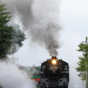 白煙とドレーン - 2020年梅雨・真岡鉄道 -