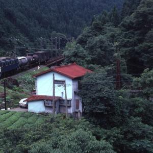 梅雨の終わり頃の雨の中を走る電車と貨物列車 - 1982年・飯田線 -