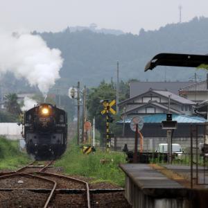 誰もいない駅に汽車が来た - 2020年梅雨・真岡鉄道 -