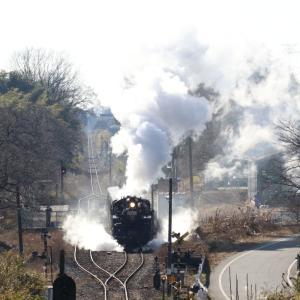 煙もレールも逆光に光った冬晴れの日 - 2020年・真岡鉄道 -