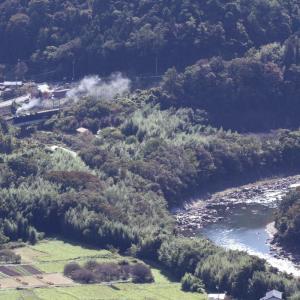 緑の利根川 - 2020年秋・上越線 -