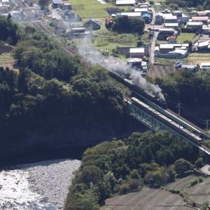 利根川の上で電車と汽車がすれ違う - 2020年秋・上越線 -