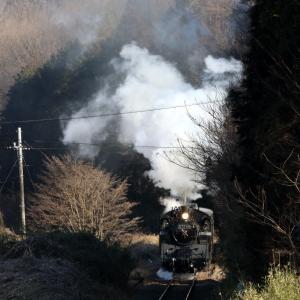 白い煙と黒い機関車と黒い影 - 2020年・真岡鉄道 -