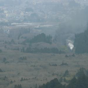 森の中に煙が立ち上る - 2021年冬・東武日光線 -