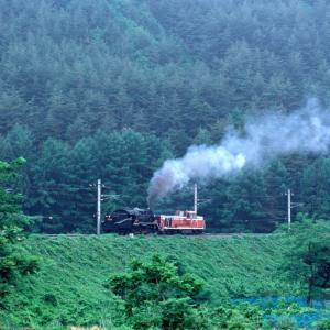 6月の善知鳥峠の築堤に白煙 - 中央本線・1988年 -