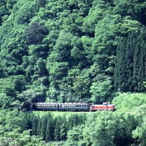 輝く新緑と赤い機関車 - 磐越西線・1992年 -