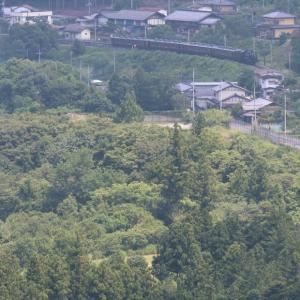 緑の舞台の後ろを汽車が通る - 2021年盛夏・秩父鉄道 -