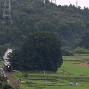 7月の緑と白煙 - 真岡鉄道・2020年 -
