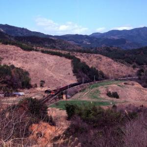 牧場の真ん中を赤い機関車の牽く貨物列車が通る - 土讃本線・1982年 -