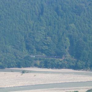 濃い緑の森に黒い汽車 - 2021年残暑・大井川鉄道 -