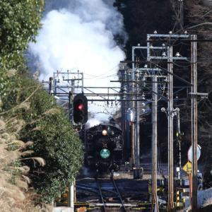 ススキと煙が白くなる頃 - 秩父鉄道・2017年 -