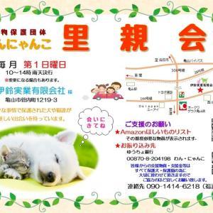 """""""12月里親会お知らせ"""""""