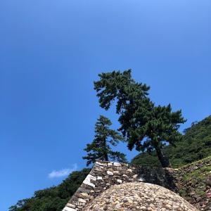 鳥取城跡:久松山
