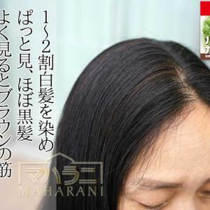 白髪1~2割、ヘナ白髪染めハーバルカラー3ブラウンの染まり方