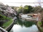 観 2019桜の京都編06 インクライン