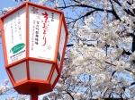 観 2019桜の京都編08 京おどり
