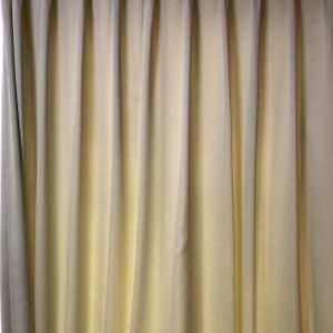 リアルグリーンカーテン