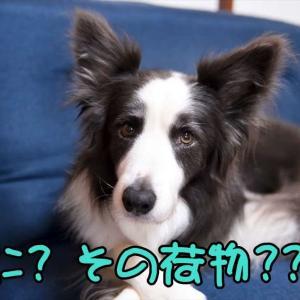 キヅキ…(;´∀`)