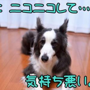 """疑惑が晴れた日(* ̄▽ ̄*)ノ"""""""