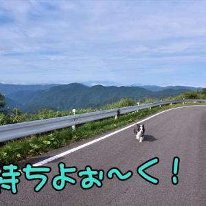 四国男旅♪⑤ ~ ワタシのチカラ? ~