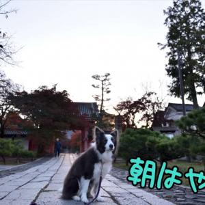あたりきしゃりきっ(= ̄∇ ̄=) ニィ