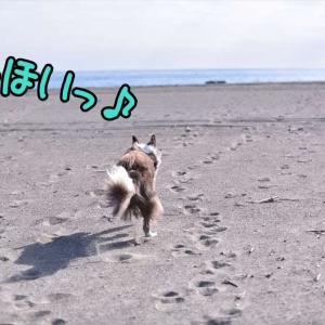 ふと…思う(*^.^*)