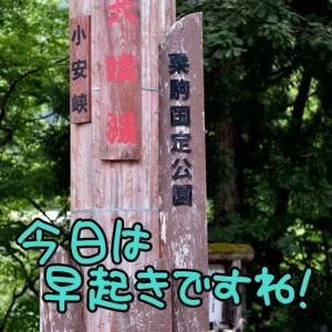 びっくり、びっくり…ビックリ!(* ´艸`)クスクス