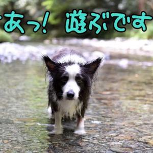 恰好なんて…気にしないっ!(* ´艸`)クスクス