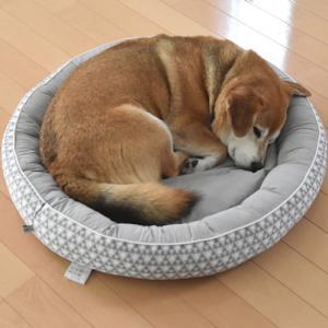 たろうの、クールベッド。