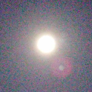 闇鍋と月光浴