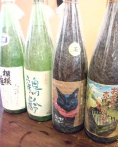 秋の夜長の日本酒たち