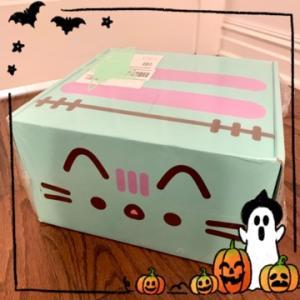 【サブスクリプションボックス】10歳娘の大好きな可愛いキャラクター