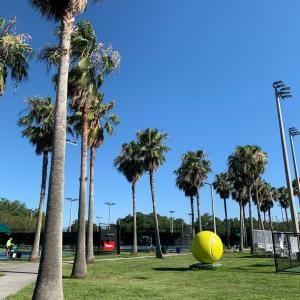 【形から入る系】娘っ子テニス続けるみたい!?