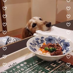 伊豆旅行へ③(お宿・夕食編)