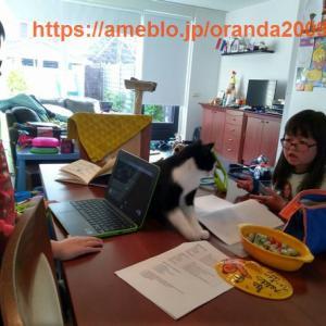 自宅学習(4月17日)①、現在5月休み中