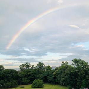 虹の下、アメリカ人教師との飲み。