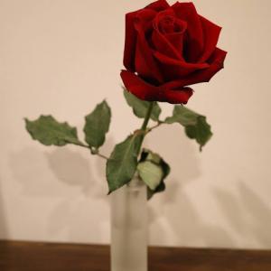 散歩、薔薇、(お金)。